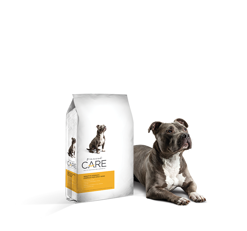 Food For Dogs With A Sensitive Stomach Diamond Care