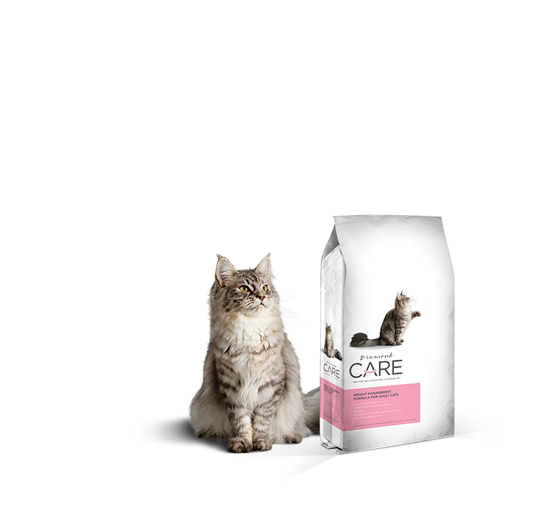 Weight Management Formula for Adult Cats