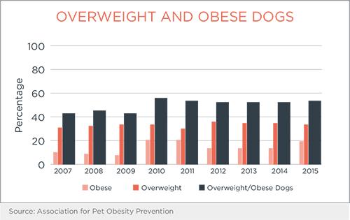 overweightdogschart